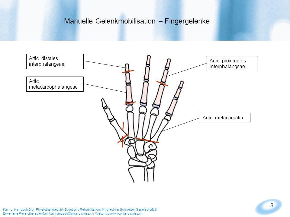 3 Manuelle Gelenkmobilisation – Fingergelenke Kay- u. Hanusch Dipl. Physiotherapeut für Sport und Rehabilitation / Mitglied der Schweizer Gesellschaft