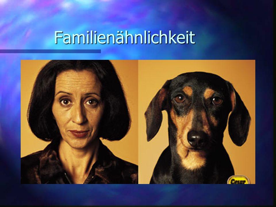 Familienähnlichkeit