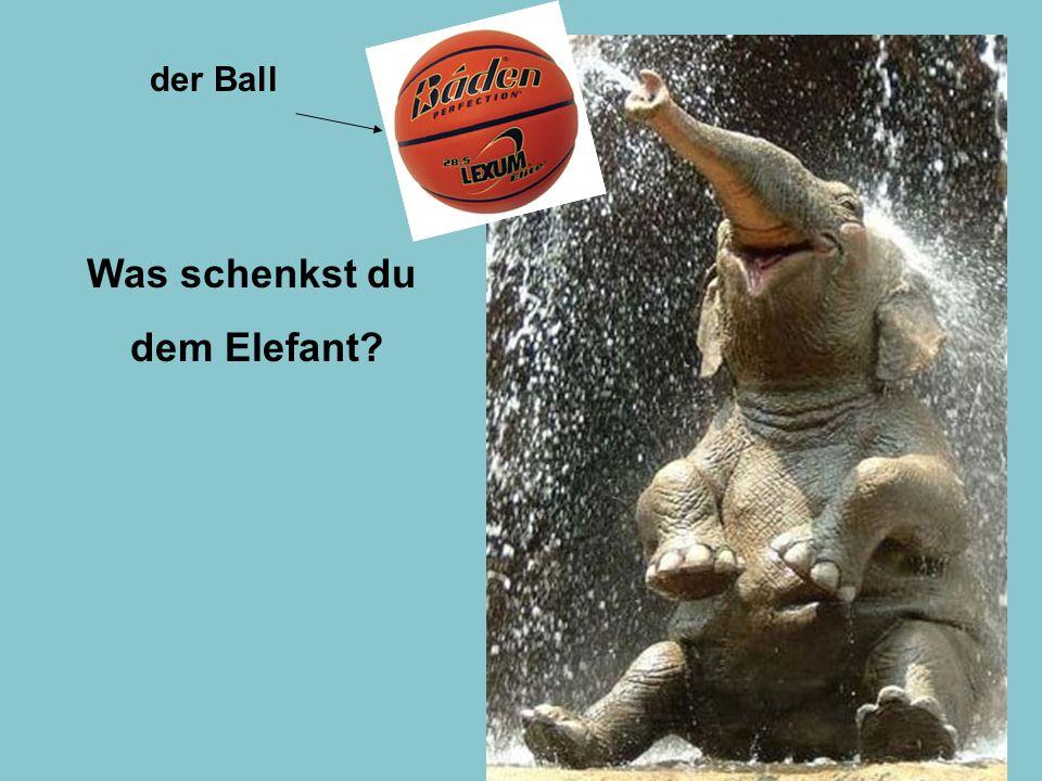 Was schenkst du dem Elefant der Ball