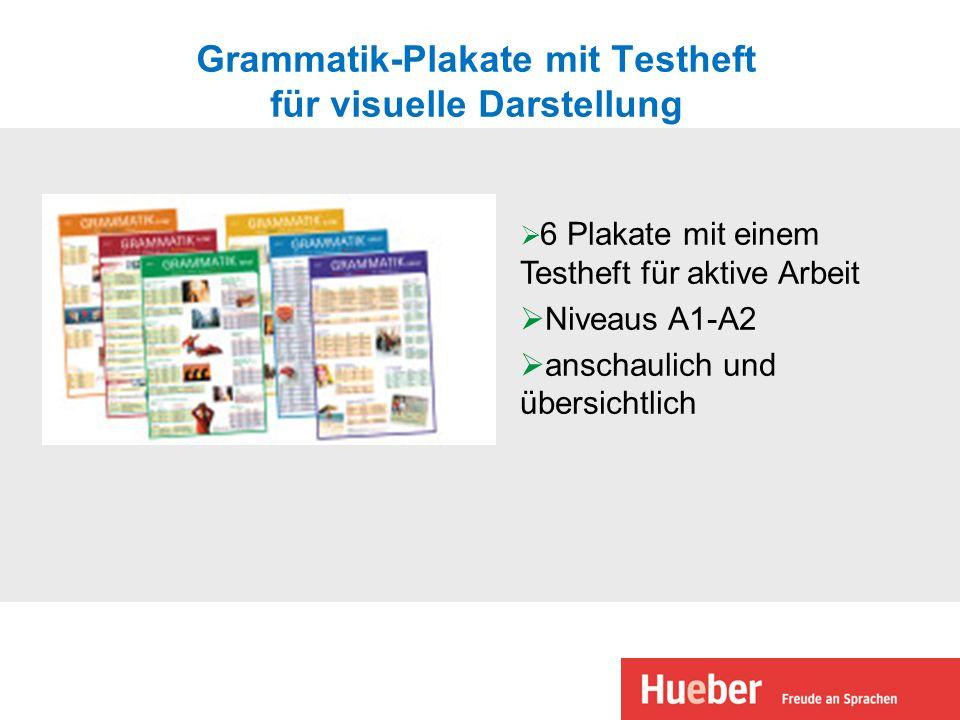 Grammatik-Plakate mit Testheft für visuelle Darstellung 6 Plakate mit einem Testheft für aktive Arbeit Niveaus A1-A2 anschaulich und übersichtlich
