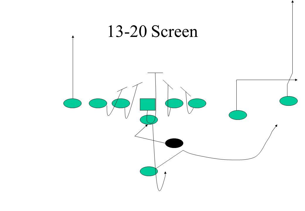 13-20 Screen