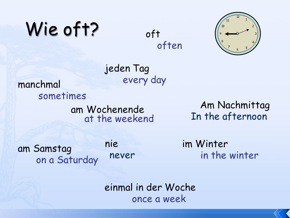 Wie oft? manchmal oft am Samstag im Winter am Wochenende einmal in der Woche jeden Tag every day sometimes often at the weekend in the winter once a w