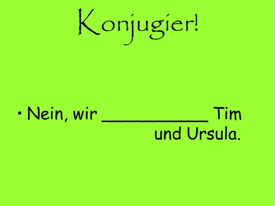 Konjugier! Nein, wir __________ Tim und Ursula.