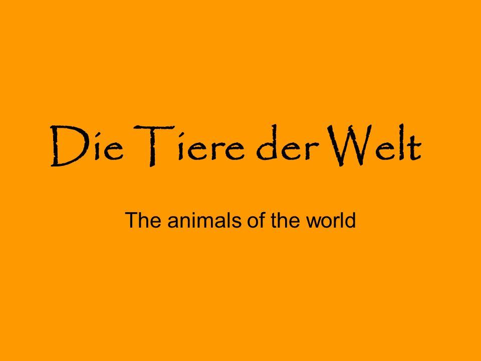 Die Tiere der Welt The animals of the world