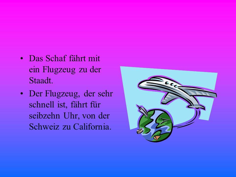 Das Schaf fährt mit ein Flugzeug zu der Staadt.