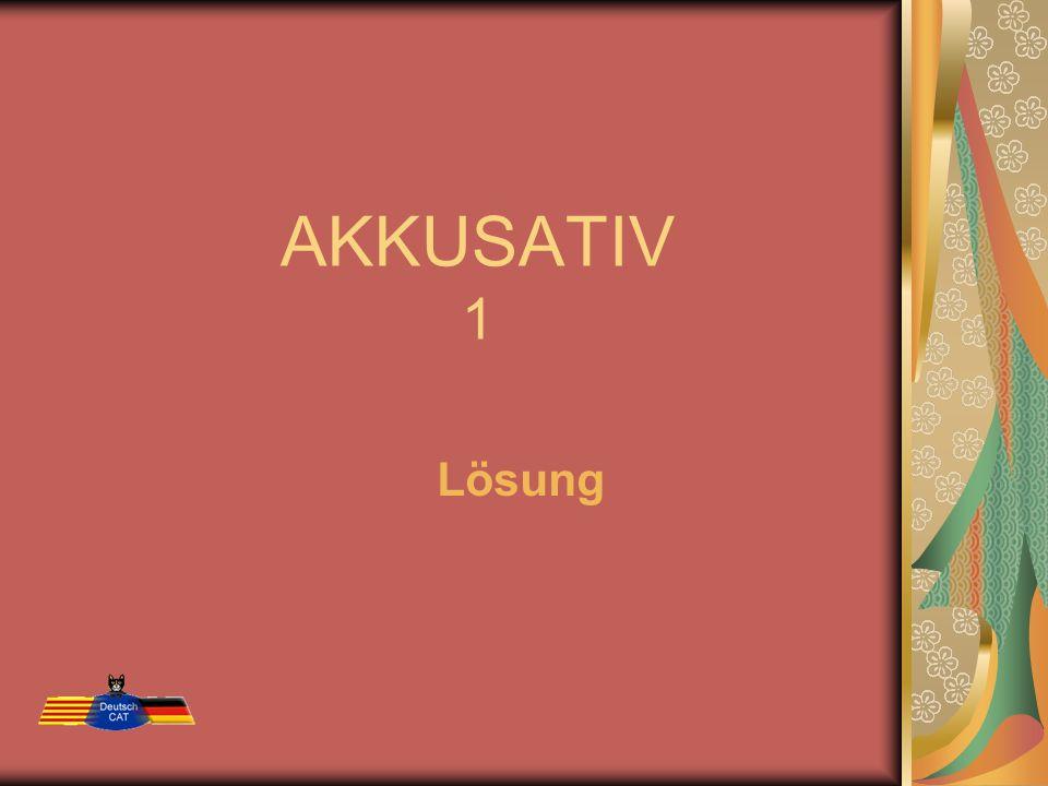 AKKUSATIV 1 Lösung