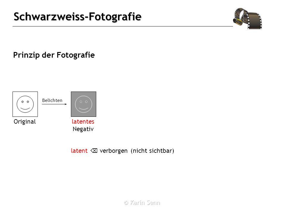 Schwarzweiss-Fotografie Belichten des Films 2 Ag + + 2 Br - 2 Ag + Br 2 schwarz E˚ = -0.26 V je mehr Licht, desto mehr Ag, d.