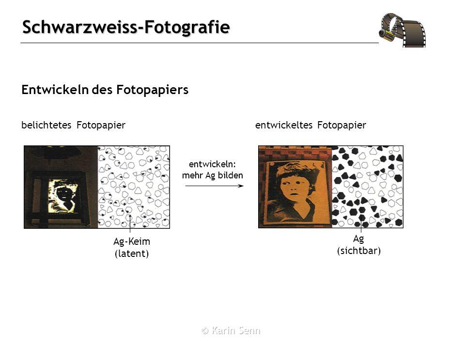 Schwarzweiss-Fotografie Entwickeln des Fotopapiers belichtetes Fotopapierentwickeltes Fotopapier Ag-Keim (latent) entwickeln: mehr Ag bilden Ag (sichtbar)