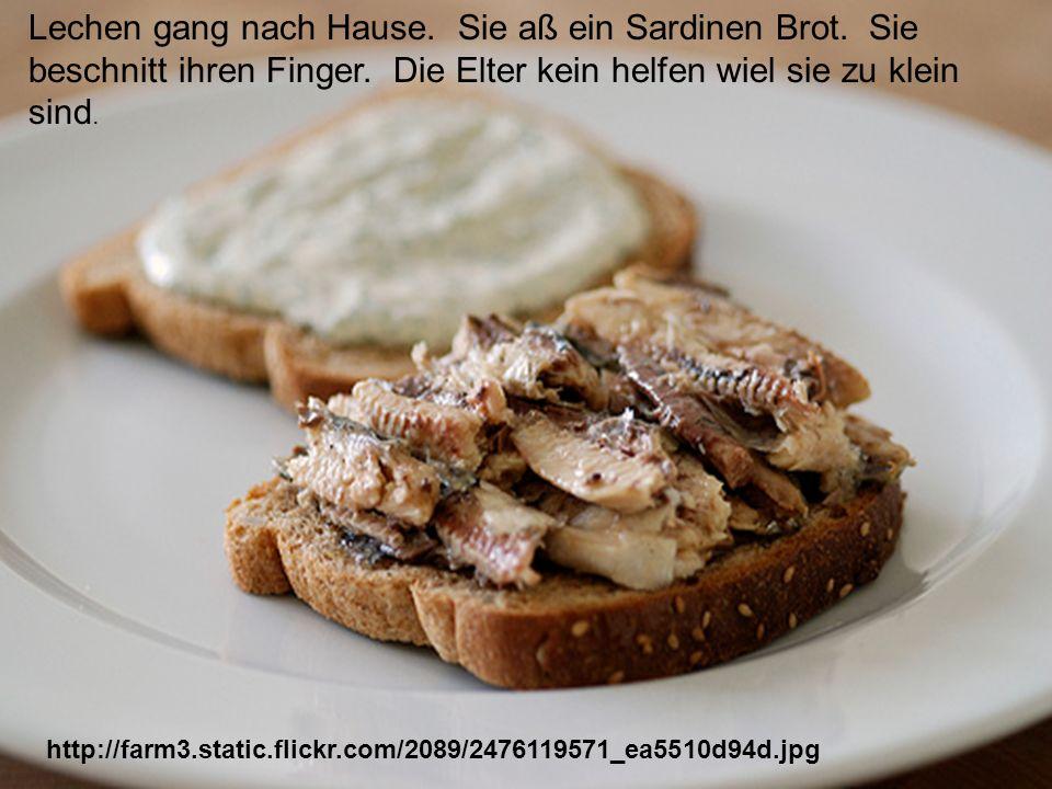 http://farm3.static.flickr.com/2089/2476119571_ea5510d94d.jpg Lechen gang nach Hause. Sie aß ein Sardinen Brot. Sie beschnitt ihren Finger. Die Elter