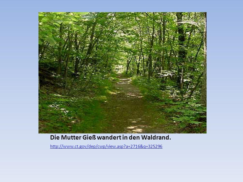 Die Mutter Gieß wandert in den Waldrand. http://www.ct.gov/dep/cwp/view.asp?a=2716&q=325296