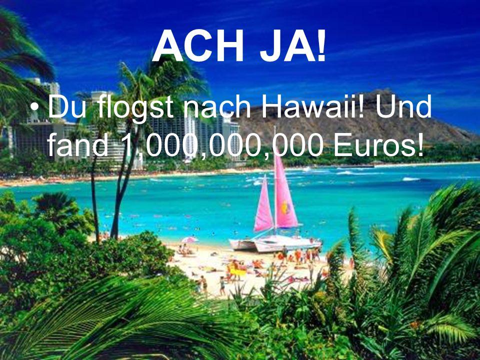 ACH JA! Du flogst nach Hawaii! Und fand 1,000,000,000 Euros!