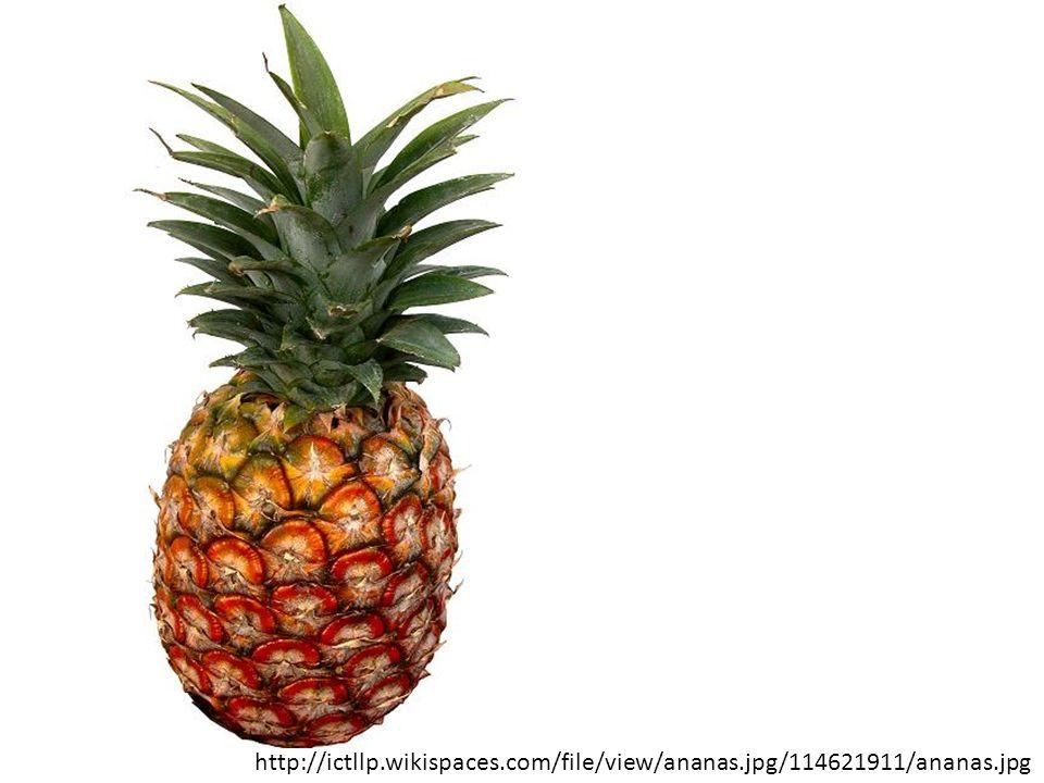 http://ictllp.wikispaces.com/file/view/ananas.jpg/114621911/ananas.jpg