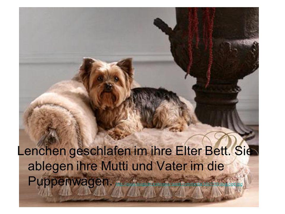 Lenchen geschlafen im ihre Elter Bett. Sie ablegen ihre Mutti und Vater im die Puppenwagen. http://www.blogcdn.com/www.luxist.com/media/2007/05/dog-be