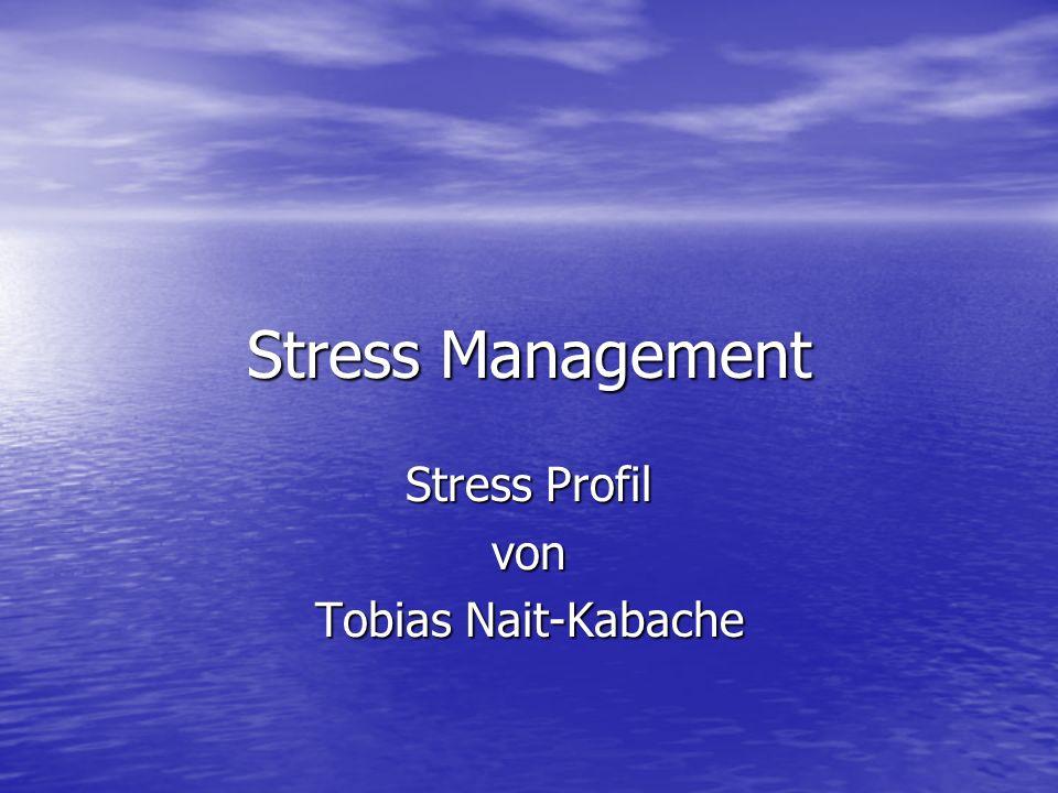 Stress Management Stress Profil von Tobias Nait-Kabache