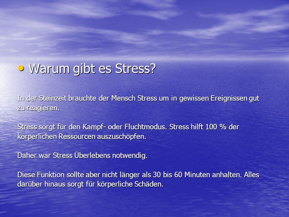 Warum gibt es Stress? Warum gibt es Stress? In der Steinzeit brauchte der Mensch Stress um in gewissen Ereignissen gut zu reagieren. Stress sorgt für