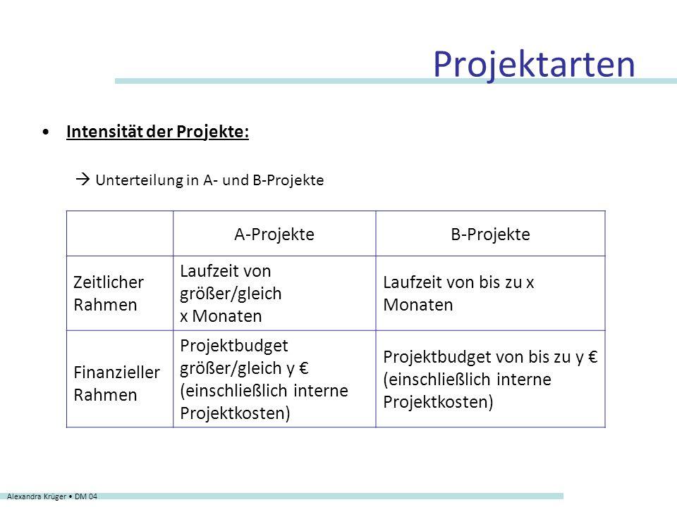 Projektarten Intensität der Projekte: Unterteilung in A- und B-Projekte Alexandra Krüger DM 04 A-ProjekteB-Projekte Zeitlicher Rahmen Laufzeit von grö