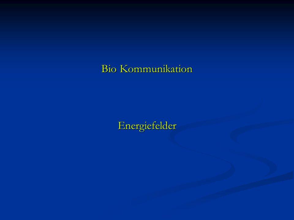 Bio Kommunikation Energiefelder Energiefelder
