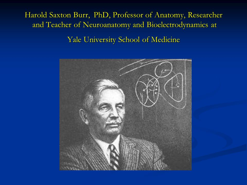 Harold Saxton Burr, PhD, Professor of Anatomy, Researcher and Teacher of Neuroanatomy and Bioelectrodynamics at Yale University School of Medicine