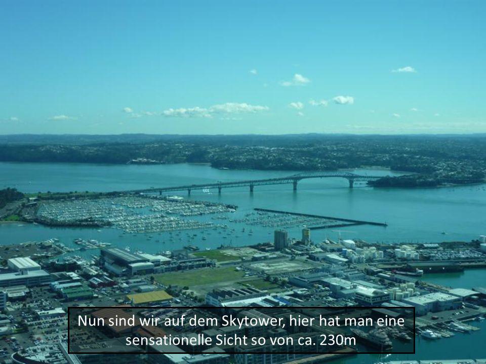 Nun sind wir auf dem Skytower, hier hat man eine sensationelle Sicht so von ca. 230m