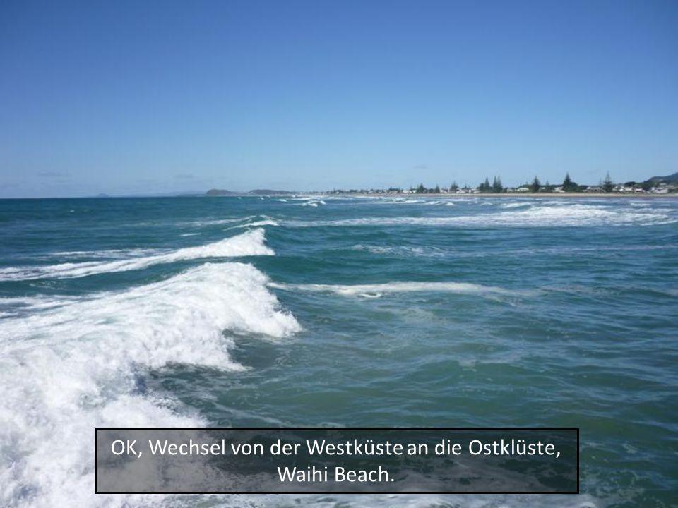 OK, Wechsel von der Westküste an die Ostklüste, Waihi Beach.