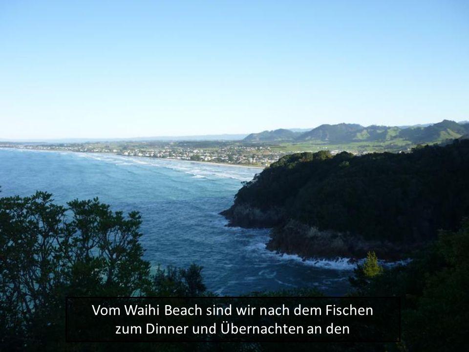 Vom Waihi Beach sind wir nach dem Fischen zum Dinner und Übernachten an den