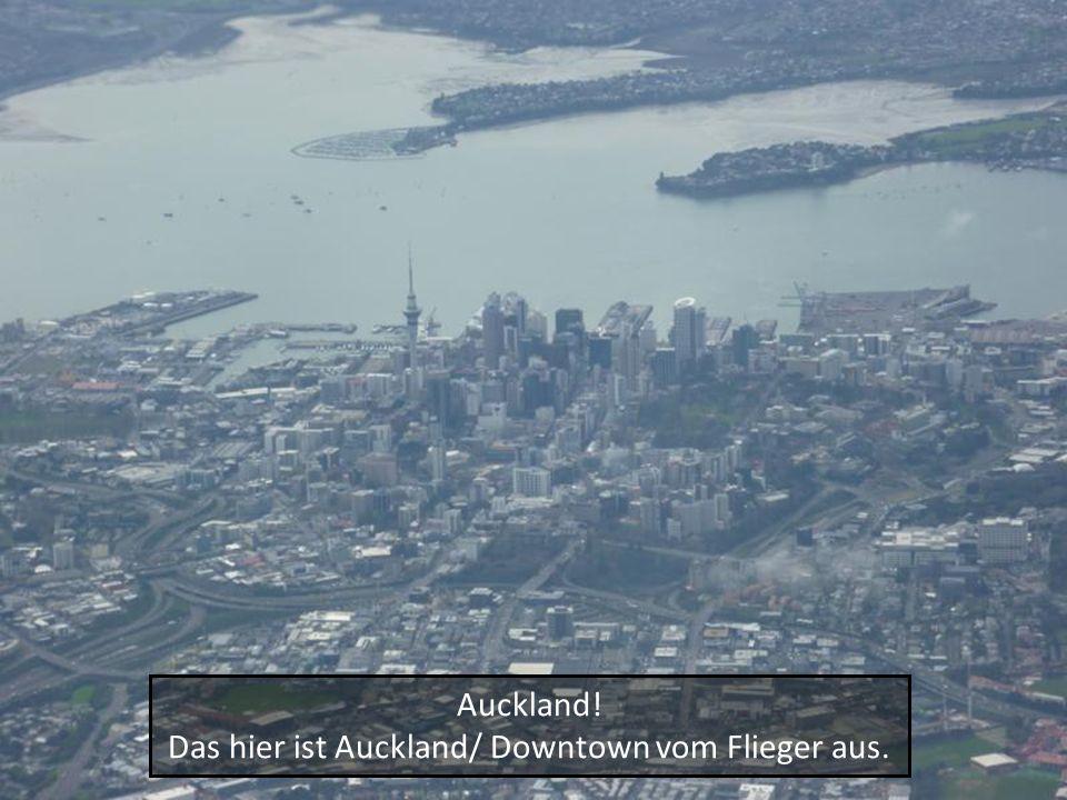 Auckland! Das hier ist Auckland/ Downtown vom Flieger aus.
