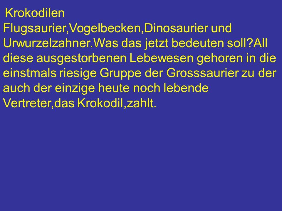 Krokodilen Flugsaurier,Vogelbecken,Dinosaurier und Urwurzelzahner.Was das jetzt bedeuten soll?All diese ausgestorbenen Lebewesen gehoren in die einstm