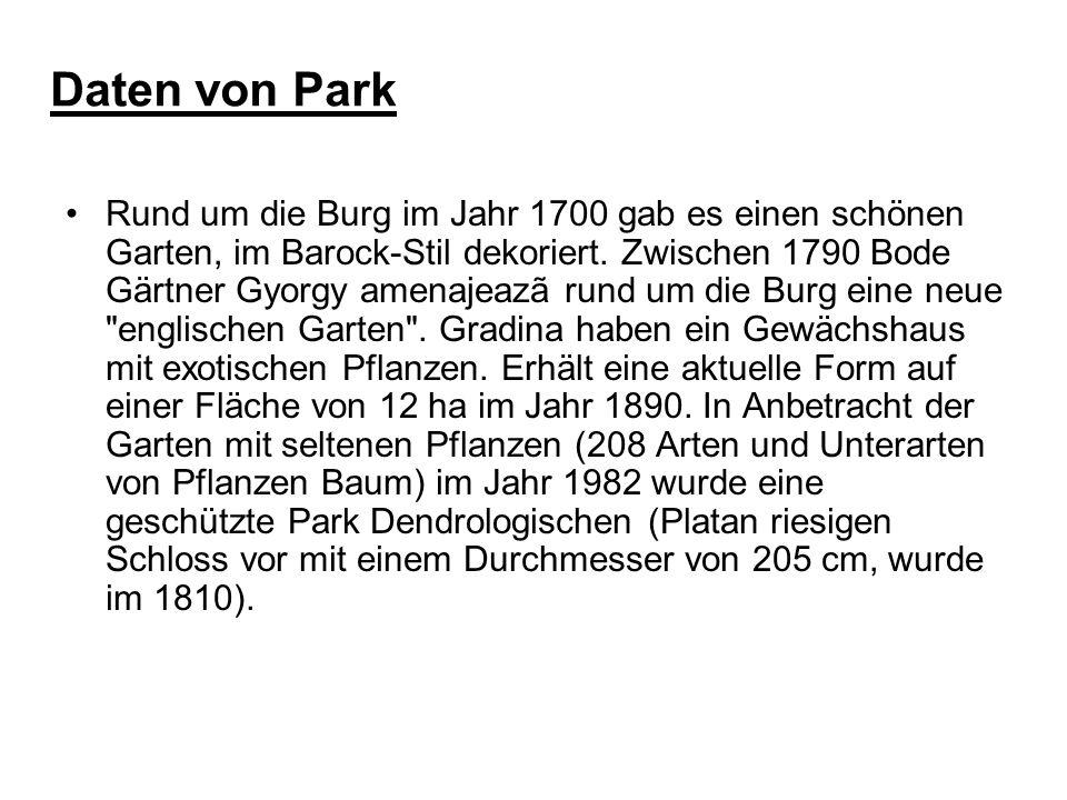 Daten von Park Rund um die Burg im Jahr 1700 gab es einen schönen Garten, im Barock-Stil dekoriert. Zwischen 1790 Bode Gärtner Gyorgy amenajeazã rund