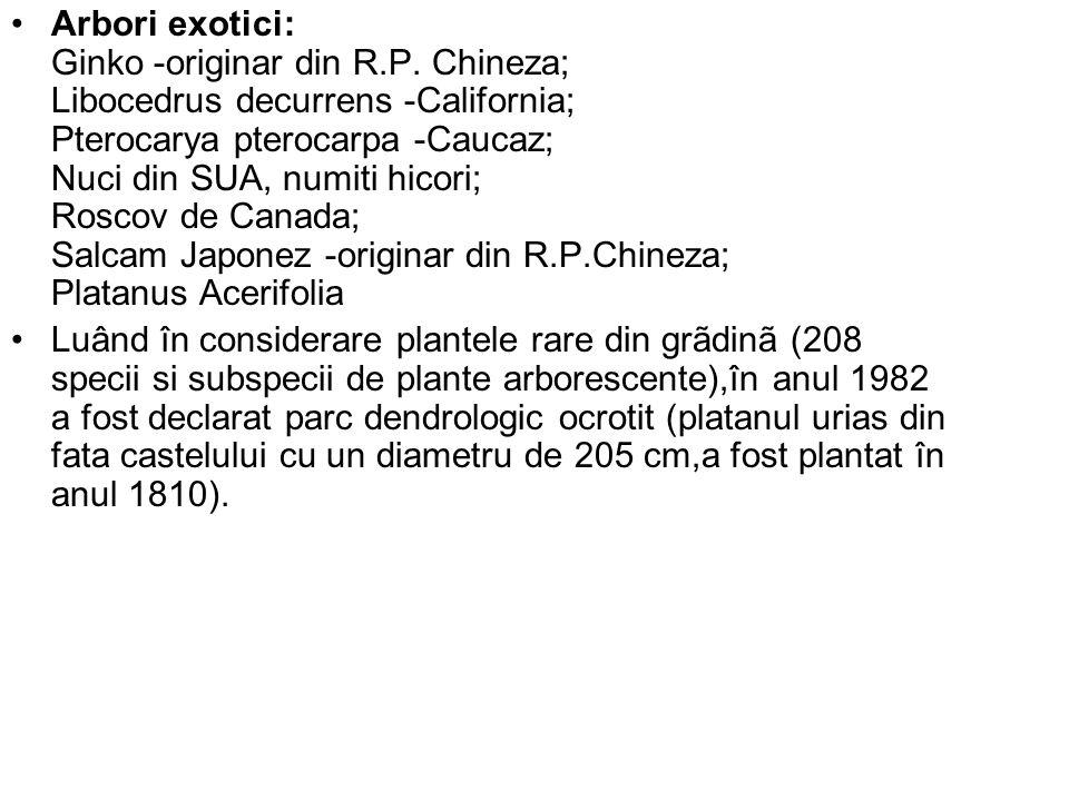 Arbori exotici: Ginko -originar din R.P. Chineza; Libocedrus decurrens -California; Pterocarya pterocarpa -Caucaz; Nuci din SUA, numiti hicori; Roscov