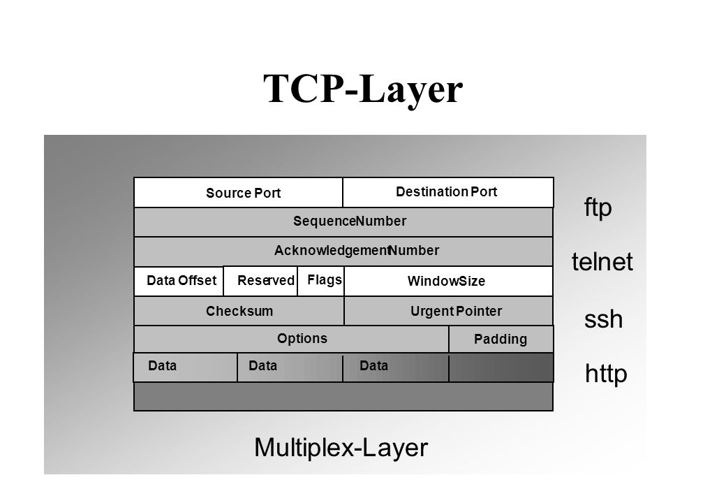 TCP-Layer Source Port DataOffset Destination Port SequenceNumber AcknowledgementNumber Options Padding Reserved WindowSize ChecksumUrgent Pointer Data Data Data Flags Multiplex-Layer ftp telnet ssh http
