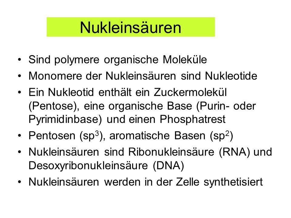 Nukleinsäuren Sind polymere organische Moleküle Monomere der Nukleinsäuren sind Nukleotide Ein Nukleotid enthält ein Zuckermolekül (Pentose), eine org