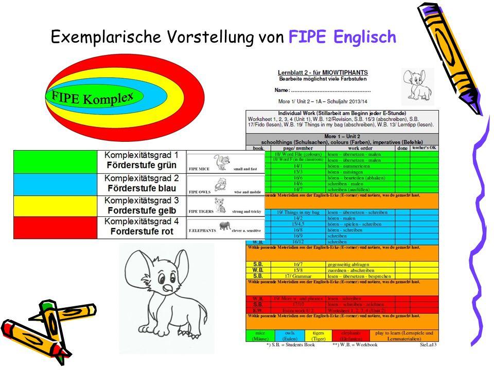 Exemplarische Vorstellung von FIPE Englisch