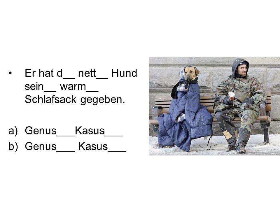 Er hat d__ nett__ Hund sein__ warm__ Schlafsack gegeben. a)Genus___Kasus___ b)Genus___ Kasus___