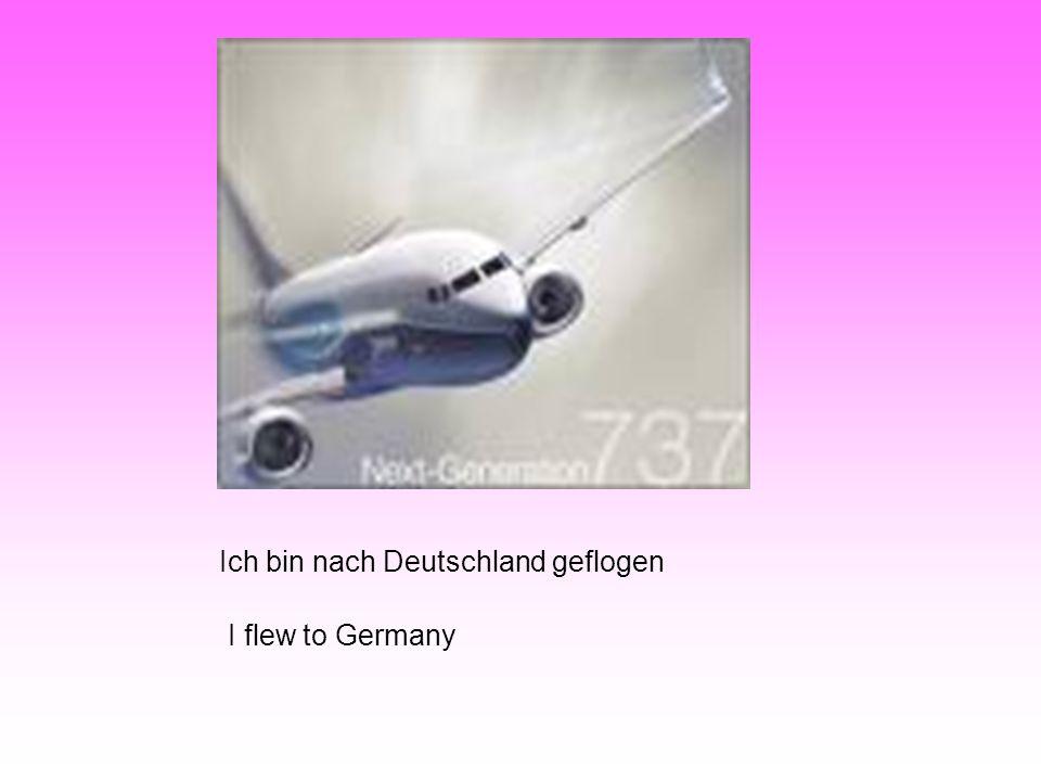 Ich bin nach Deutschland geflogen I flew to Germany
