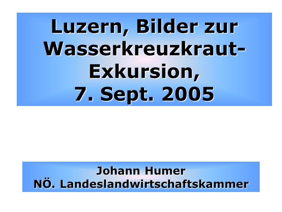 Luzern, Bilder zur Wasserkreuzkraut- Exkursion, 7. Sept. 2005 Johann Humer NÖ. Landeslandwirtschaftskammer
