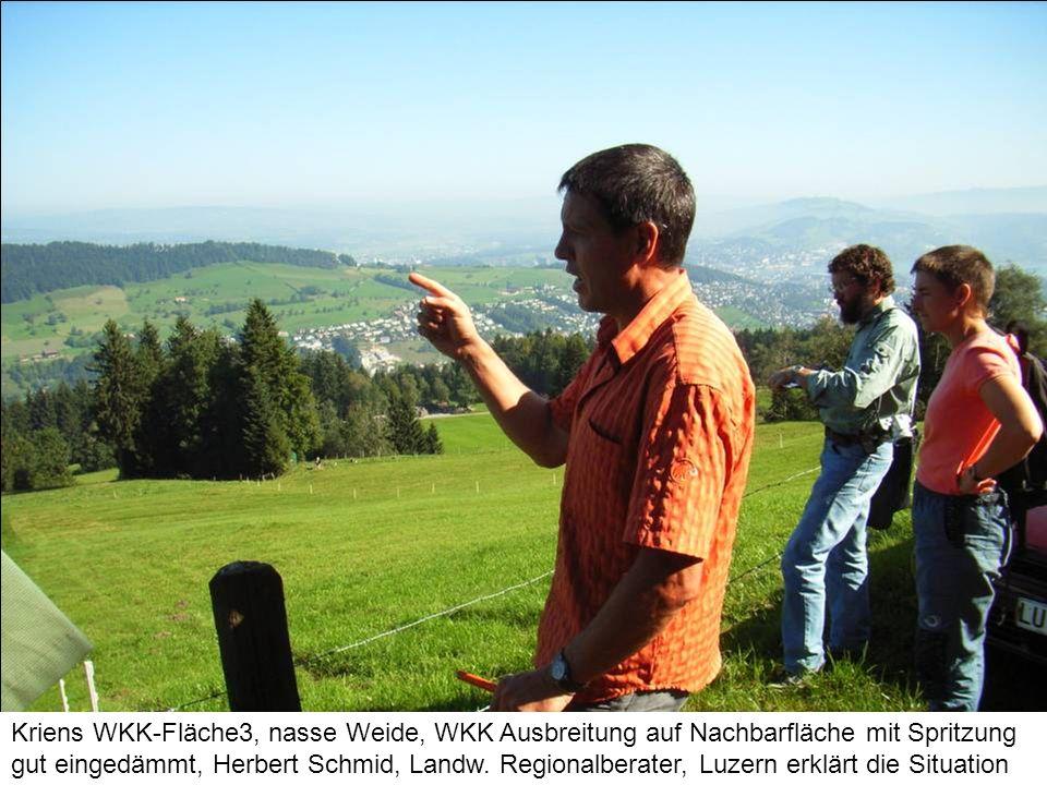 Kriens WKK-Fläche3, nasse Weide, WKK Ausbreitung auf Nachbarfläche mit Spritzung gut eingedämmt, Herbert Schmid, Landw. Regionalberater, Luzern erklär