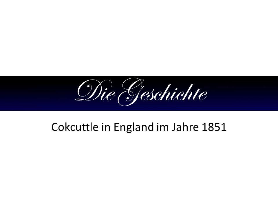 Die Geschichte Cokcuttle in England im Jahre 1851