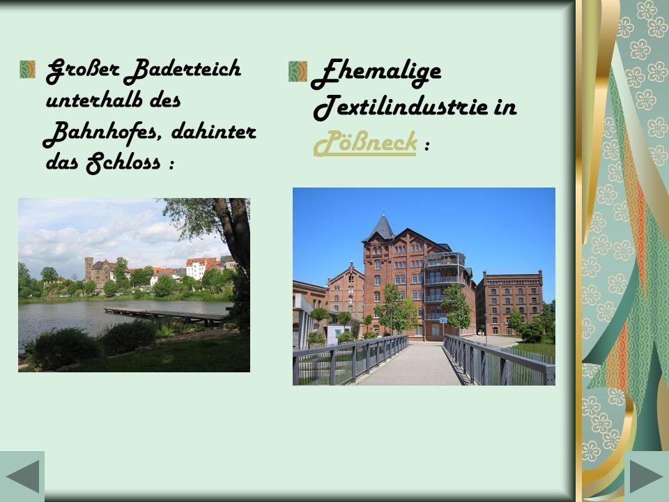 Großer Baderteich unterhalb des Bahnhofes, dahinter das Schloss : Ehemalige Textilindustrie in Pößneck : Pößneck
