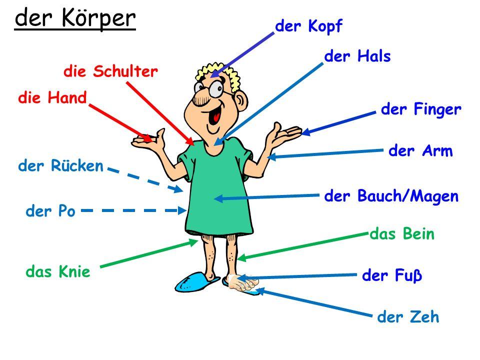 Grammatik Possessive adjectives mein (my), dein (your), sein (his), ihr (her).
