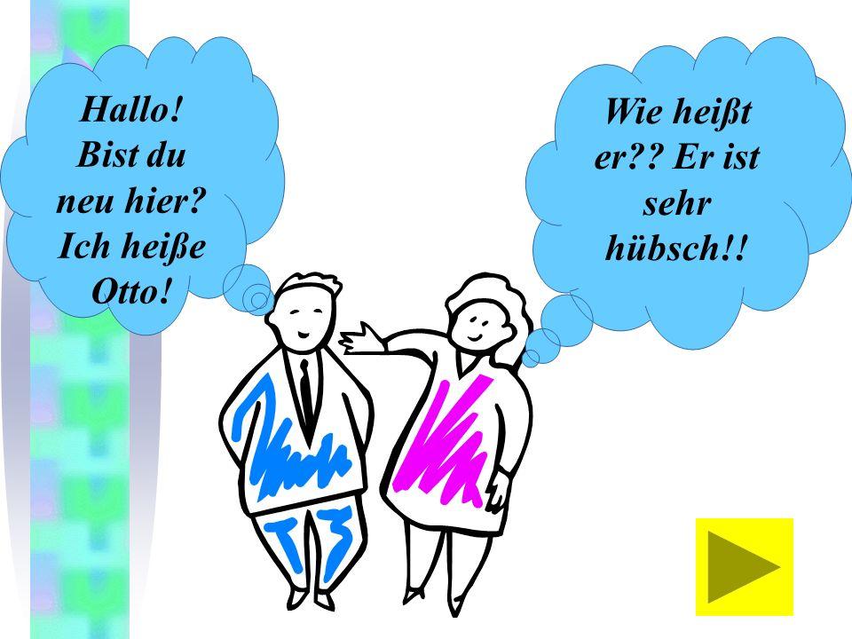 The verb heißen: Literally means to be called, but we translate it as my name is heißen ich wir duihr ersie esSie heiße heißt heißen heißt heißen My n