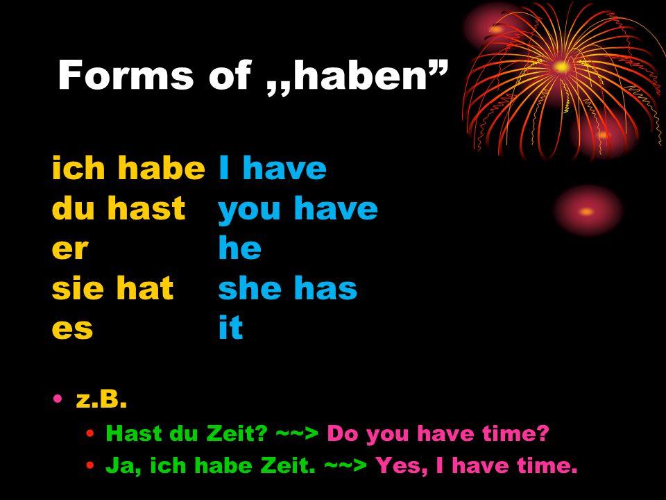 Plural forms,,haben wir haben ihr habt sie/Sie haben we have you (all) have they have you (formal) have z.