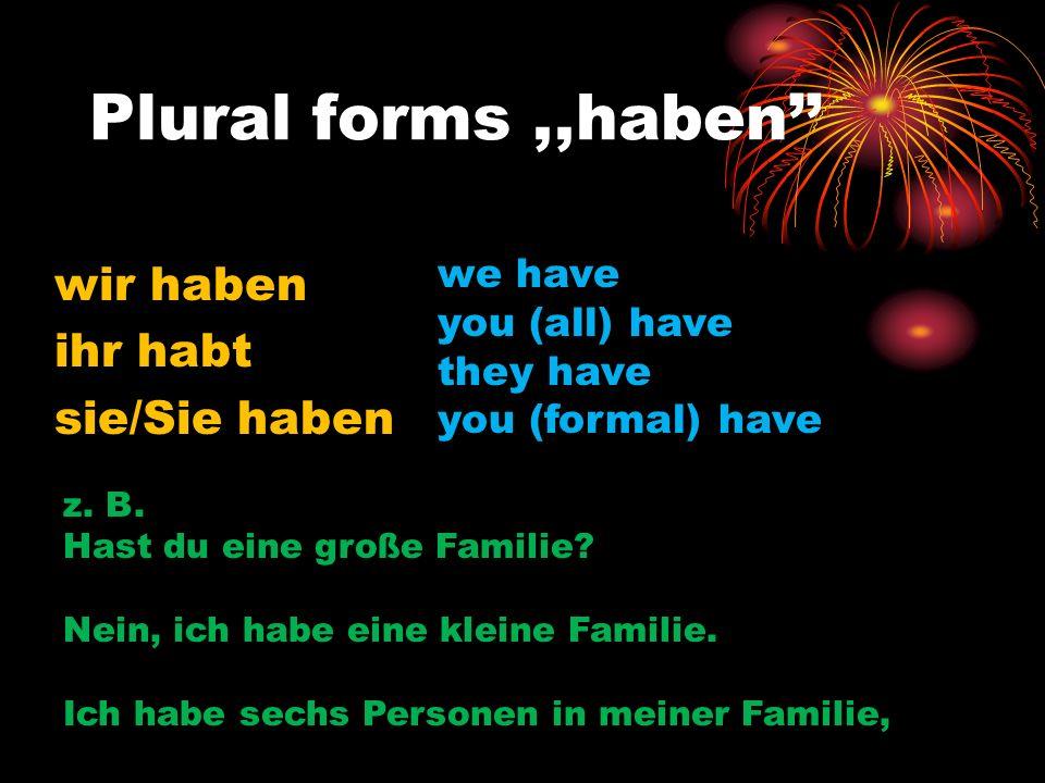 Plural forms,,haben wir haben ihr habt sie/Sie haben we have you (all) have they have you (formal) have z. B. Hast du eine große Familie? Nein, ich ha