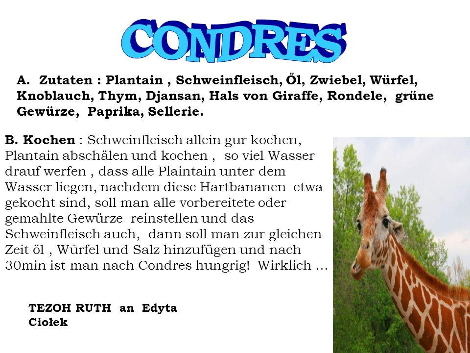 A. Zutaten : Plantain, Schweinfleisch, Ől, Zwiebel, Würfel, Knoblauch, Thym, Djansan, Hals von Giraffe, Rondele, grüne Gewürze, Paprika, Sellerie. B.
