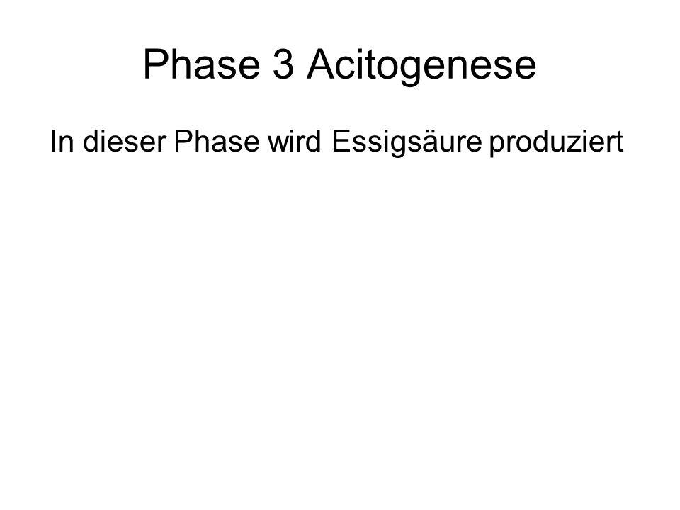 Phase 4 Methangenese In der letzten Phase wird die vorher produzierte Essigsäure in Methan umgewandelt