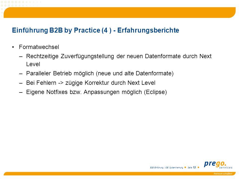 B2B Einführung VSE Systemtrennung Seite 12 Einführung B2B by Practice (4 ) - Erfahrungsberichte Formatwechsel –Rechtzeitige Zuverfügungstellung der ne