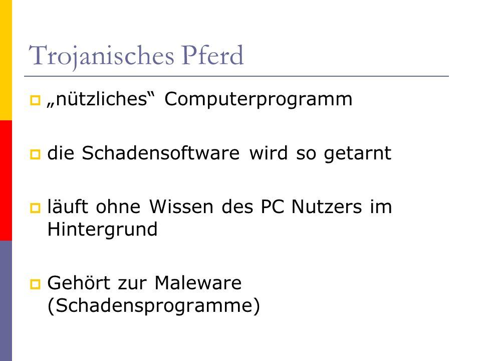 Trojanisches Pferd nützliches Computerprogramm die Schadensoftware wird so getarnt läuft ohne Wissen des PC Nutzers im Hintergrund Gehört zur Maleware