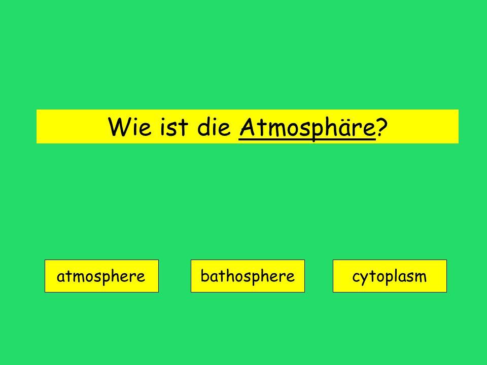 Wie ist die Atmosphäre? atmosphere bathospherecytoplasm