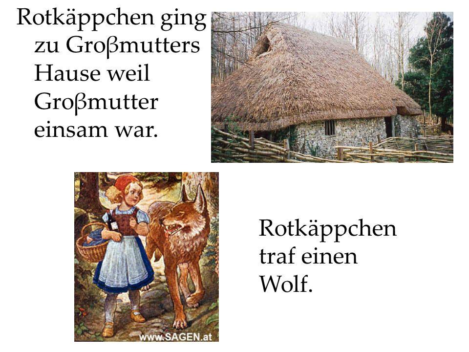 Rotkäppchen ging zu Groβmutters Hause weil Groβmutter einsam war. Rotkäppchen traf einen Wolf.