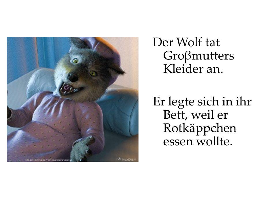 Der Wolf tat Groβmutters Kleider an. Er legte sich in ihr Bett, weil er Rotkäppchen essen wollte.