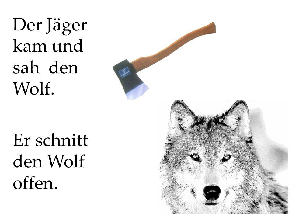 Der Jäger kam und sah den Wolf. Er schnitt den Wolf offen.